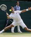 İlk finalist Djokovic