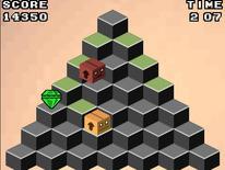 Zeka Piramidi
