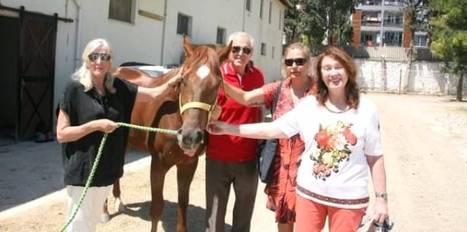 Yar�� atlar� sucuk mu oluyor?
